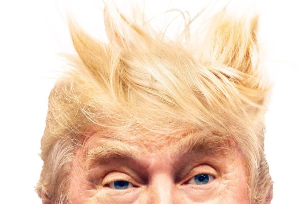 vanities i am the swoosh donald trump hair